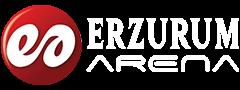 Erzurum Arena Gazetesi
