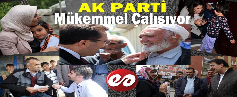 Ak Parti Erzurum'da Arı Gibi Çalışıyor