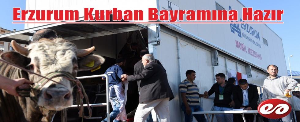 Erzurum Kurban Bayramına Hazır