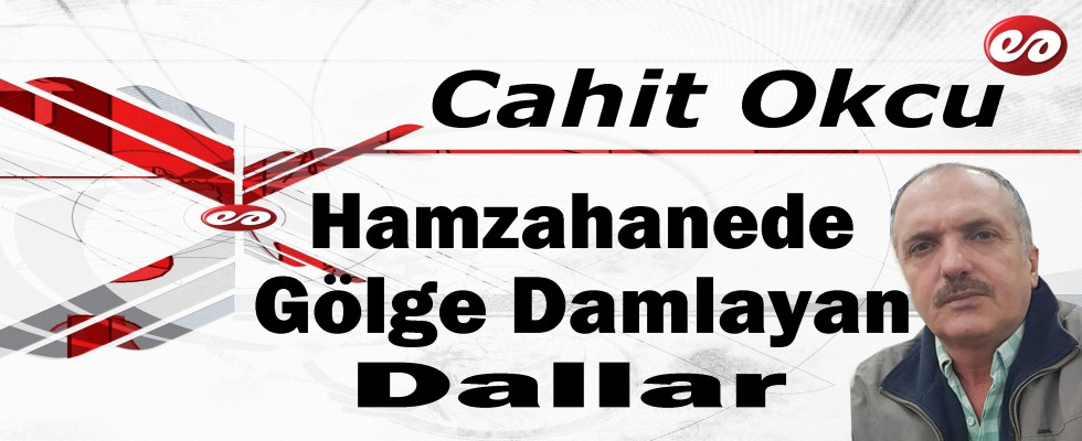 ''Hamzahanede Gölge Damlayan Dallar'' Cahit Okcu'nun Kaleminden