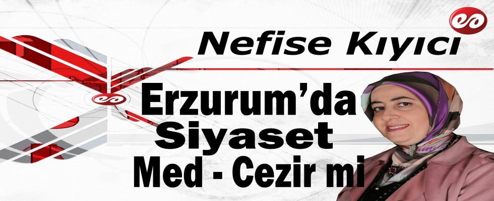'' Erzurum'da Siyaset Med - Cezir mi? '' Nefise Kıyıcı'nın Kaleminden