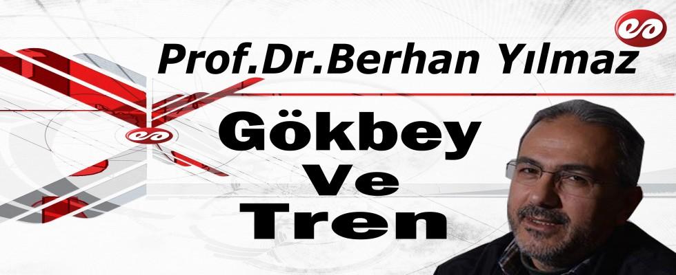 'Gökbey ve Tren' Prof. Dr. Berhan Yılmaz'ın Kaleminden