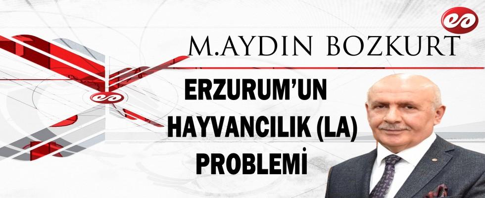 ''ERZURUM'UN HAYVANCILIK ( LA) PROBLEMİ'' M.AYDIN BOZKURT'UN KALEMİNDEN