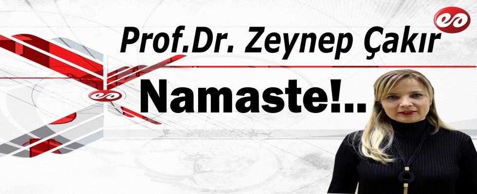 'Namaste' Prof. Dr. Zeynep Çakır'ın Kaleminden