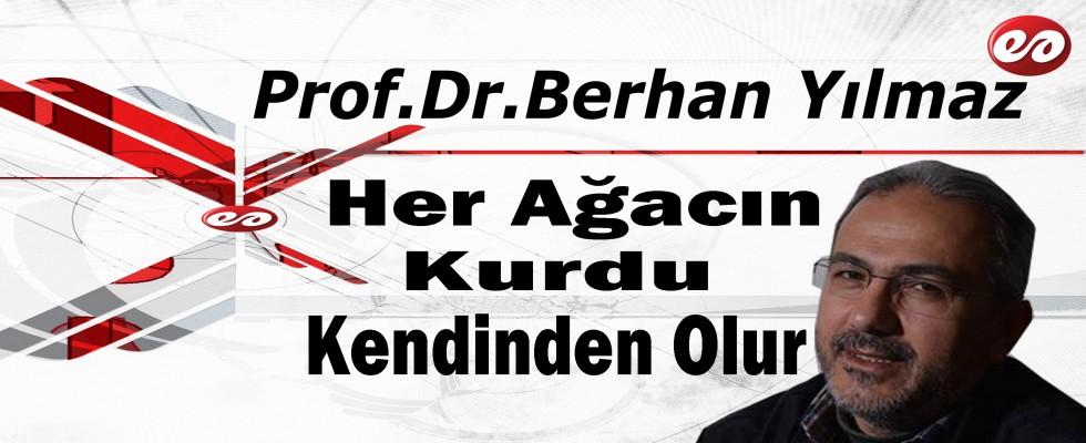 ''Her Ağacın Kurdu Kendinden Olur'' Prof. Dr. Berhan Yılmaz Yazdı