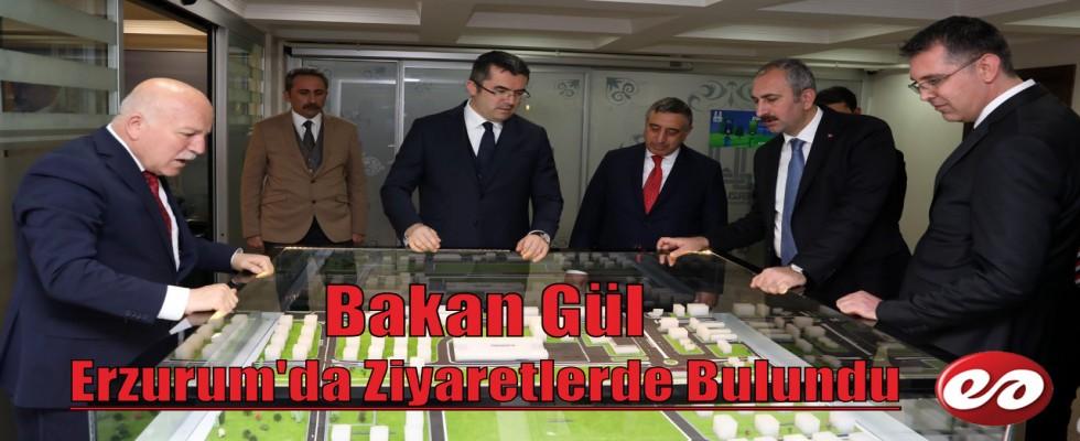 Bakan Gül Erzurum'da Ziyaretlerde Bulundu
